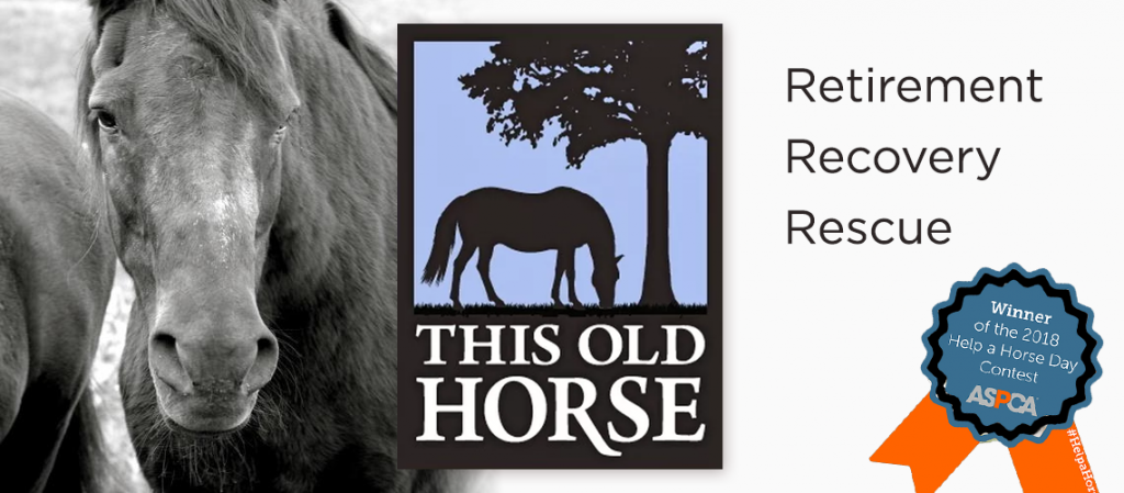 This Old Horse logo and banner